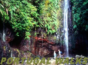 Madeira Guided Walking Tours